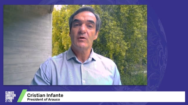 Cristian Infante<br>President of Arauco
