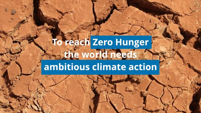 Zero Hunger Needs Ambitious Climate Action<br>World Food Programme