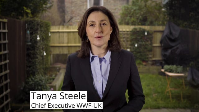 Tanya Steele's Call to Action